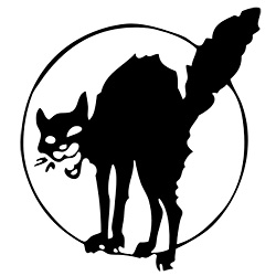london_gato_negro