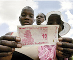 dolares-zimbabuenses