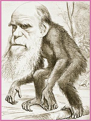 caricatura-darwin