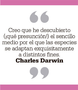 Creo que he descubierto (¡qué presunción!) el sencillo medio por el que las especies se adaptan exquisitamente a distintos fines. Charles Darwin