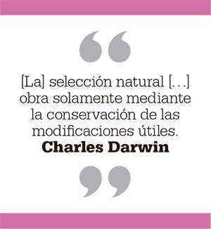 [La] selección natural […] obra solamente mediante la conservación de las modificaciones útiles. Charles Darwin