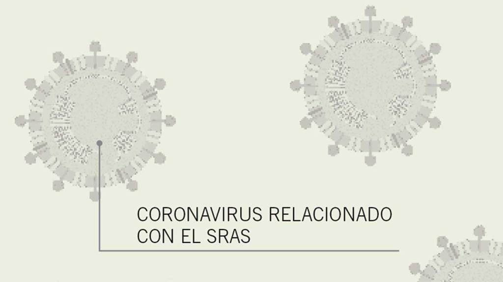 coronavirus-sras